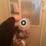 【Vine動画】ジャニーズ系イケメンが入浴中の筋肉イケメンに氷水をぶっかけるw