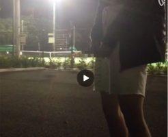 【Vine動画】街灯に照らされながら公園で巨根を取り出し大放尿! 勢いが凄いw