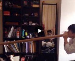 【Vine動画】長い筒を使って金玉を吸い立てる遊びに興じるジャニーズ系童顔美少年たちw
