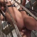 【ゲイ動画】腹筋バキバキEXILE系筋肉イケメンを拘束目隠しして、巨根でじっくり貫きケツマンを拡張させる!