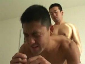【ゲイ動画ビデオ】柔らかな光が射し込む白い部屋で、激しいセックスに汗を流し合う筋肉マッチョイケメン兄貴たち!
