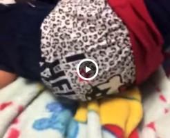 【Vine動画】ジャニーズ系スリム美少年DKのパンツをずらしてスリ筋尻を鑑賞w