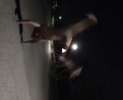 【Vine動画】ジャニーズ系スリム筋肉イケメンが全裸側転で巨根大回転w