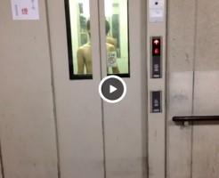 【Vine動画】エレベーターからジャニーズ系スリム筋肉イケメンが降臨してフルチン嵐ダンスを踊るw